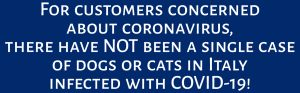 coronavirus COVID-19 safe for pets dubai uae